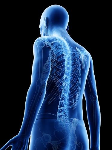 Illustration of an man's bone scan