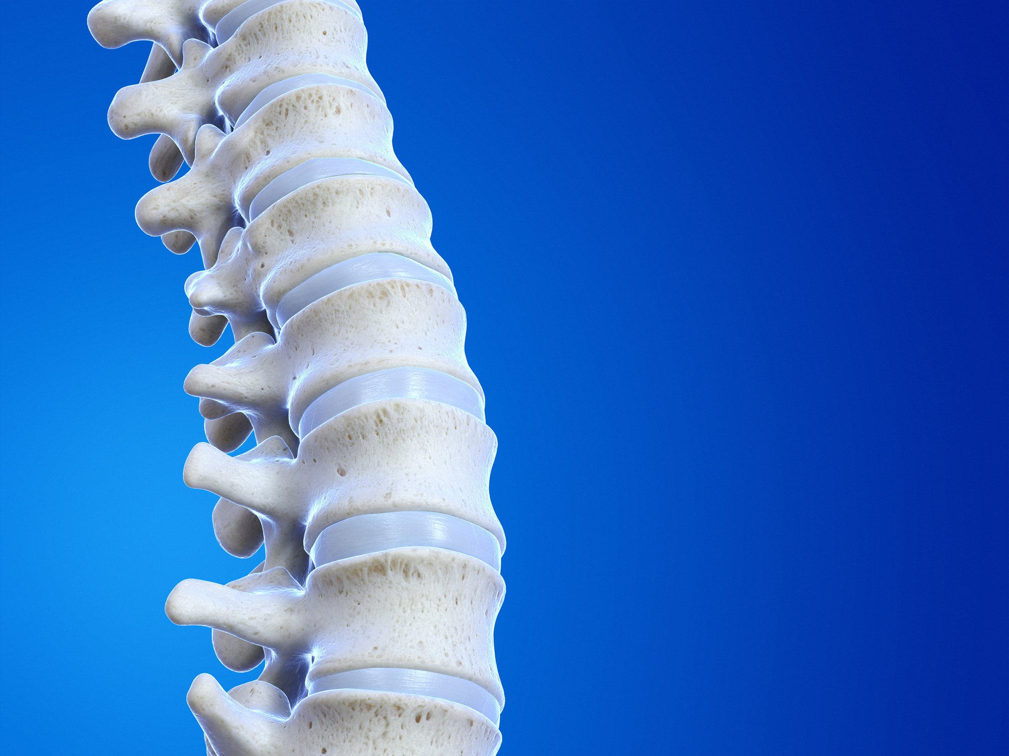 Human spine, illustration shown to Grand Prairie TX patient